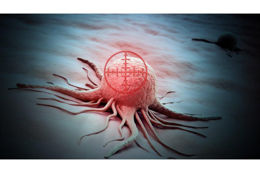 Cho con hỏi cách chữa ung thư, con bị ung thư nhiều lắm
